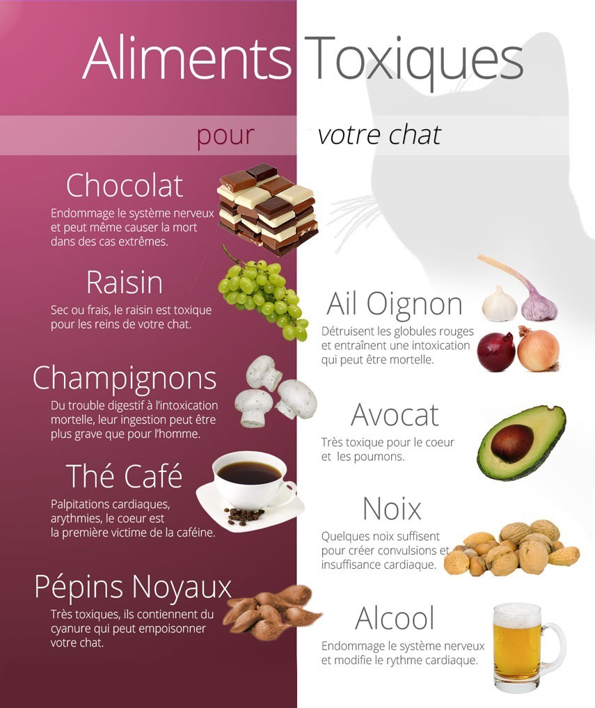 aliments-toxiques